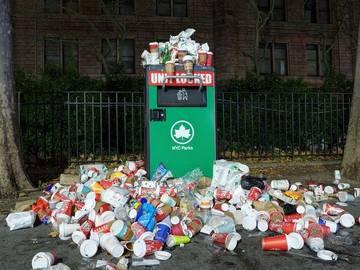 The Sleepy History of 'Litter' | Merriam-Webster