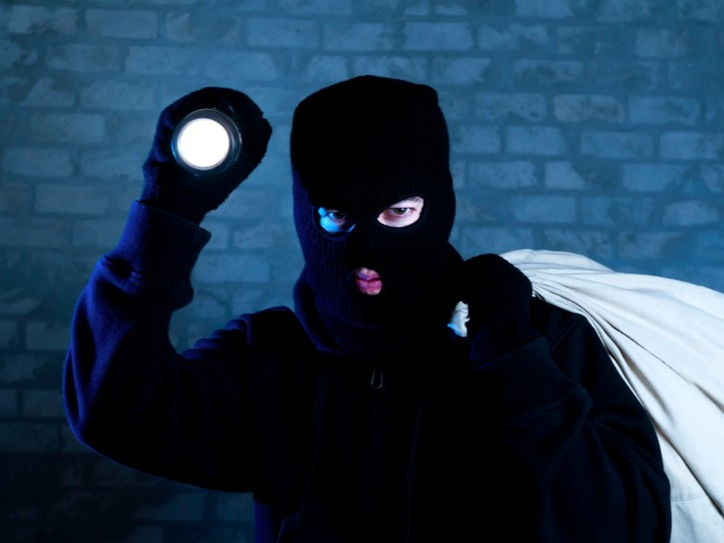 burglar-2055-183bf3f9f30c301725d6b321e0d