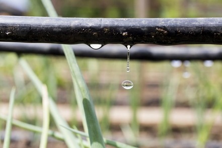 driblet-words-for-small-things-water-drop