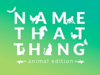 name-that-thing-animal-edition