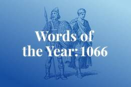 Words of the Year 1066 & Canopy | Definition of Canopy by Merriam-Webster