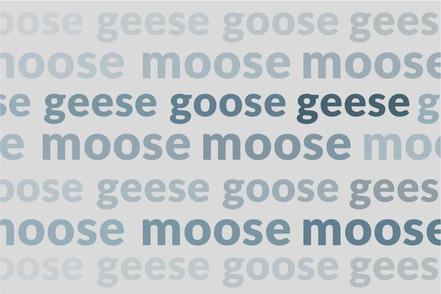 video-moose-goose-weird-plurals